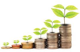 dinero creciendo